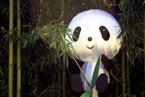 Panda's Paradise