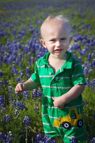 little bluebonnet boy