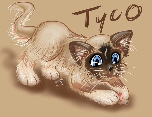 sketch_tyco