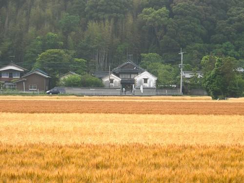 Studio Kura遠景