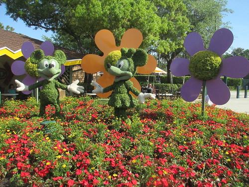pases baratos Disney World
