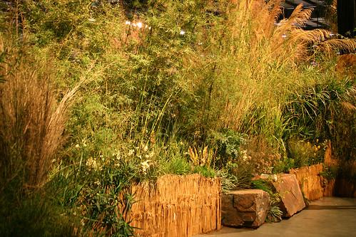 Greenlee garden1