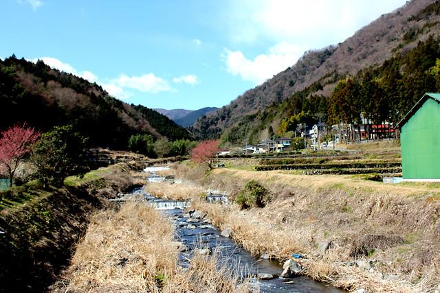 矢倉岳_11