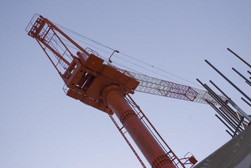 Crane_2012-04-08N01