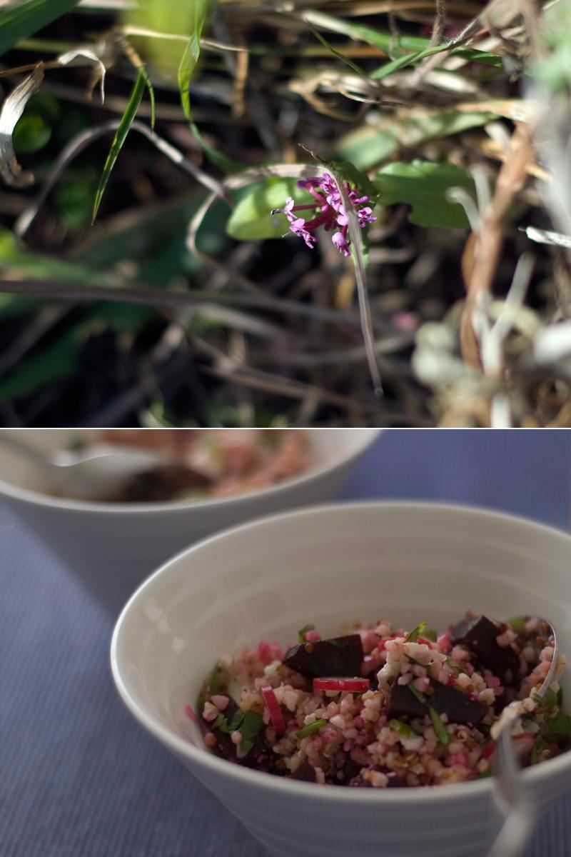 Salada de bulgur e quinoa com beterraba // Bulgur Quinoa Salad