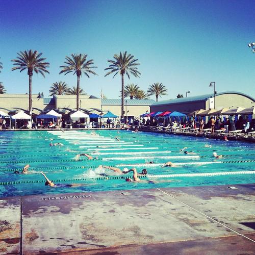 106/366 :: masters swim meet