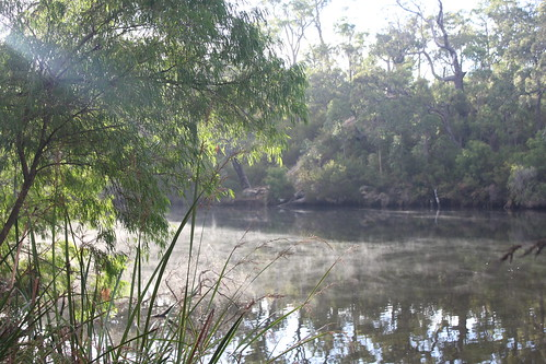 Blackwood River in the morning