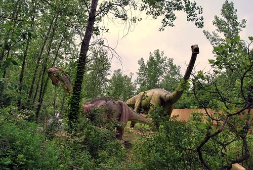 Dino - partners