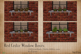 fucifino.red cedar window boxes