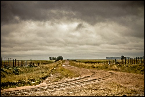 Camino by MarcosCousseau