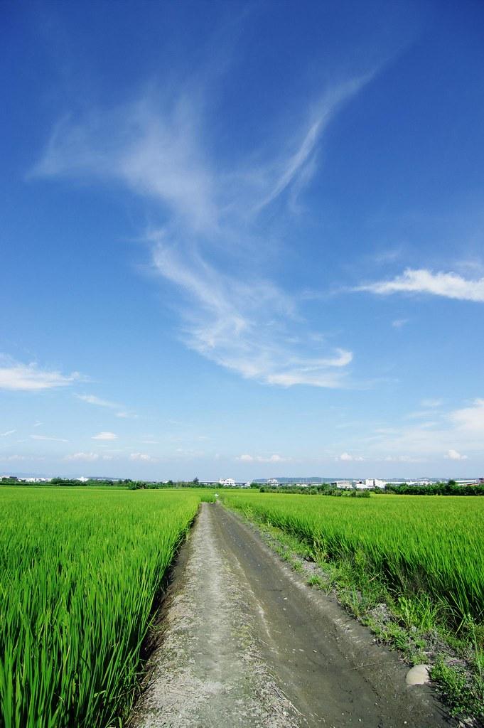 2012年5月13日天氣晴,我在高美和藍天有個約會。