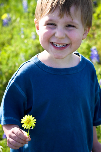 dandelion boy