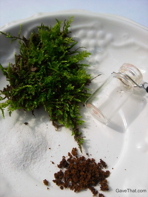 Things needed to make your own living terrarium necklace pendent