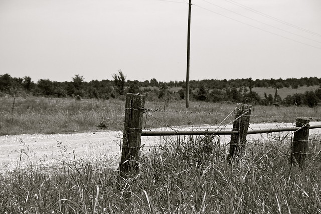 old barb wire fence