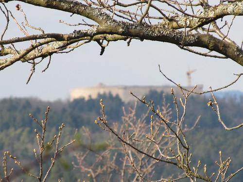 village eguisheim et ses chateaux 183