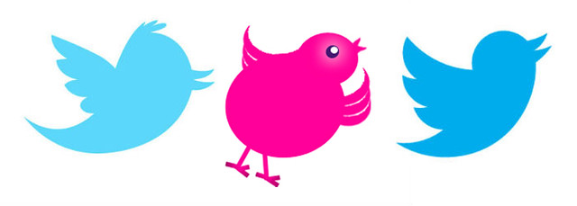 our-twitter-bird-in-context