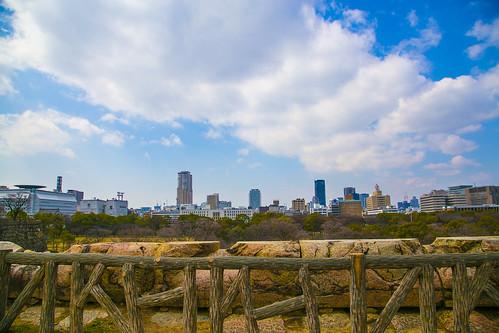 大阪城梅林2014031504