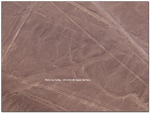 Nazca-28