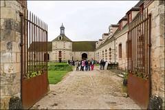 Champlay 89 : Jardins en Fête au Colombier vert - Photo of Aillant-sur-Tholon