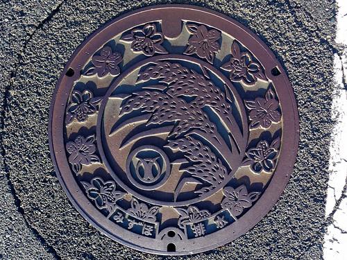 mizuho shimane japan manhole plant flower 花 稲 マンホール 日本 島根県 瑞穂町