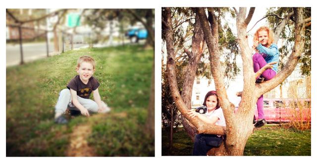 climbtree