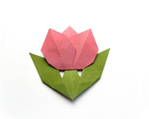 flat origami flowers wwwimgkidcom the image kid has it