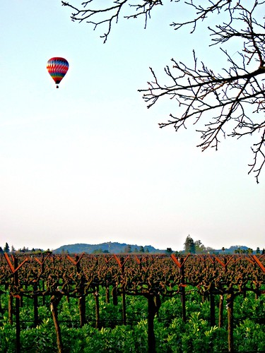 northerncalifornia napa winecountry napacounty