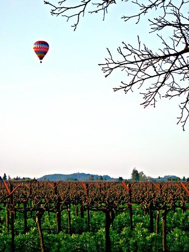 northerncalifornia napa winecountry napacounty