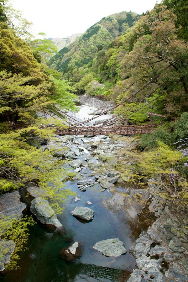 かずら橋|徳島県三好市