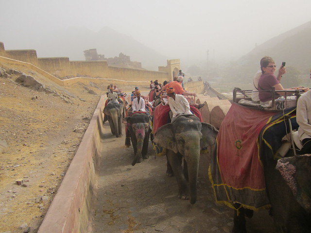 elephant ride to Amber Fort, Jaipur