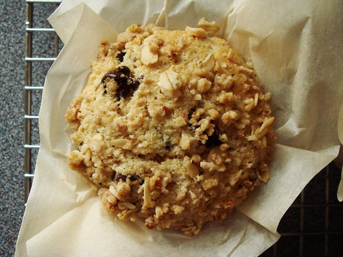 Chocolate Chip Muffin with Streusel