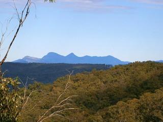 Mount Elliott Road