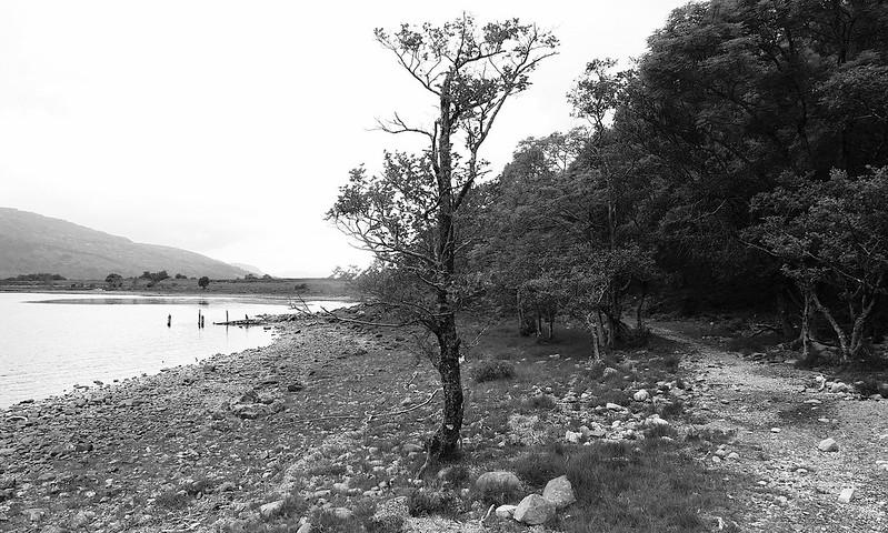 Besides Loch Maree