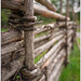fence, close-up with an old 28/2