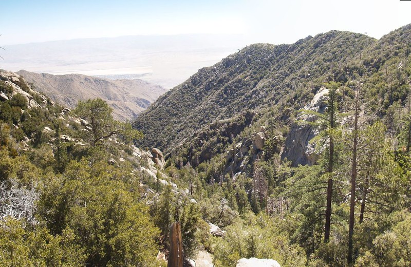 The view down Tahquitz Creek Canyon drainage from Carumba Overlook