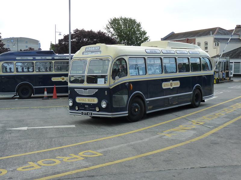 Royal Blue OTT 43