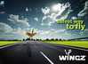 Wingz - Safest way to fly
