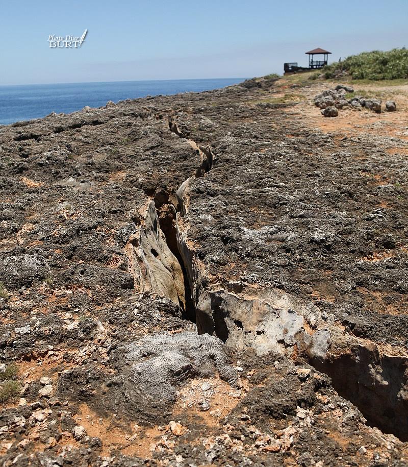珊瑚礁間的裂隙