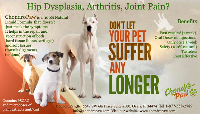 Dog Joint Pain Relief Natural