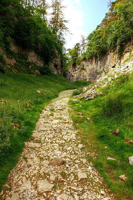the footpath to Trow Gill - an impressive cliff and gorge in Yorkshire Dales