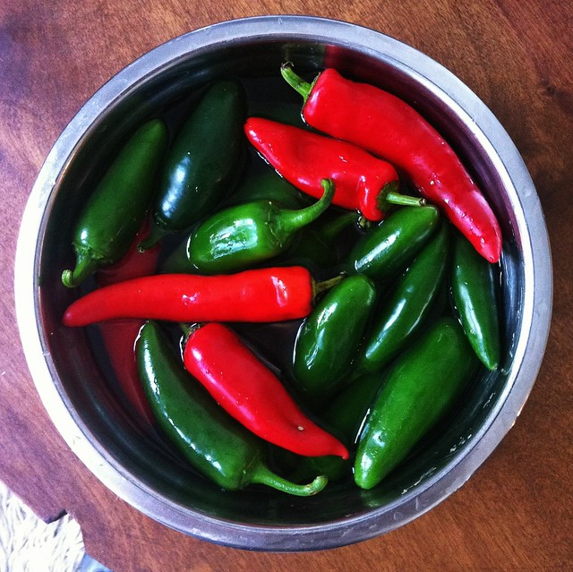Whey Fermented Jalapeno (and other Hot) Peppers Slices Whey Pepper (Hot) Hot Pepper