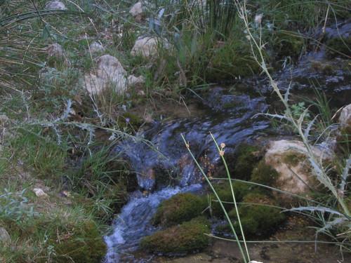 que buena el agua del rio zumeta