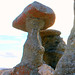 Stone Mushrooms - Babele