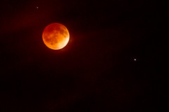 Blood Moon - 20140415-0130
