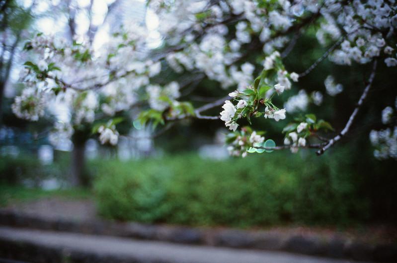 feel the spring