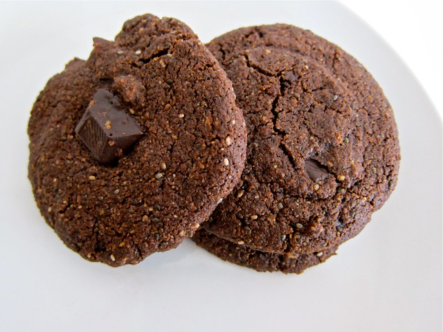double chocolate spiced cookies