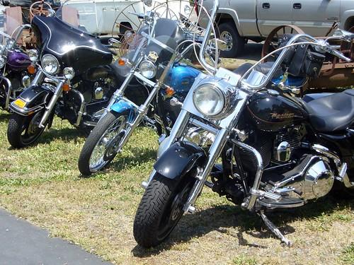 Harley Davidsons 3 (DRW)