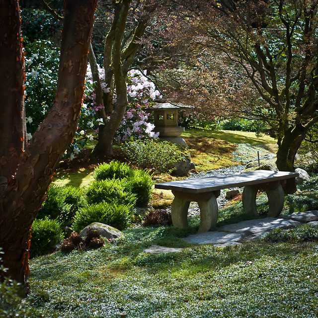 Seattle Japanese Garden Bench And Lantern Flickr Photo