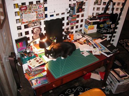 Feline postal brigade awaits