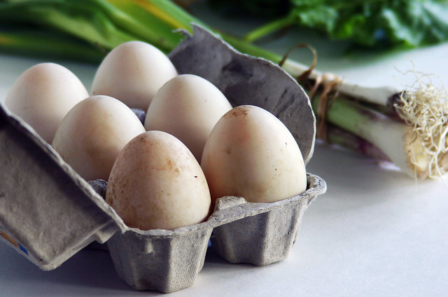 local duck eggs